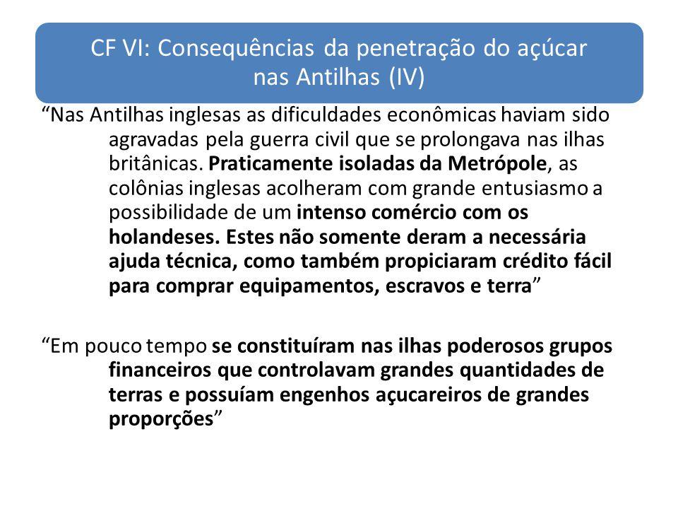 CF VI: Consequências da penetração do açúcar nas Antilhas (IV)