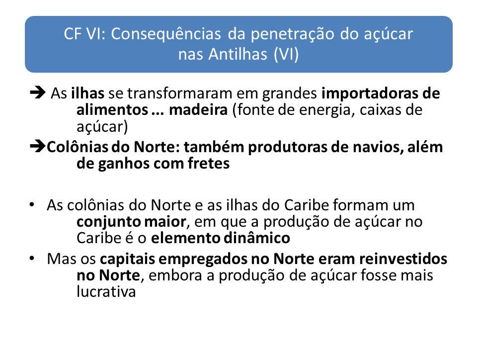 CF VI: Consequências da penetração do açúcar nas Antilhas (VI)