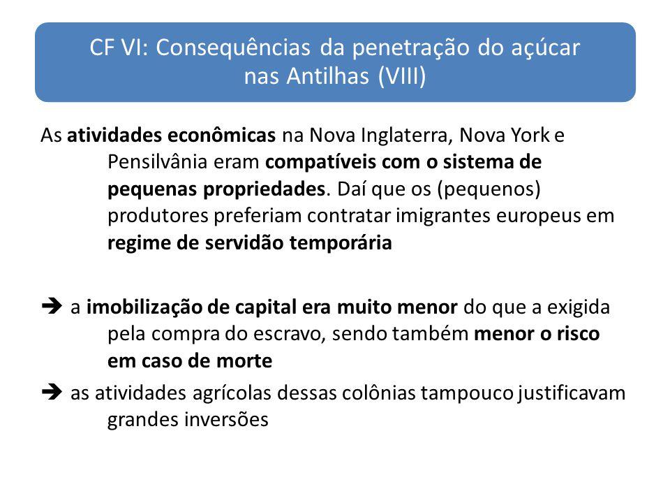 CF VI: Consequências da penetração do açúcar nas Antilhas (VIII)