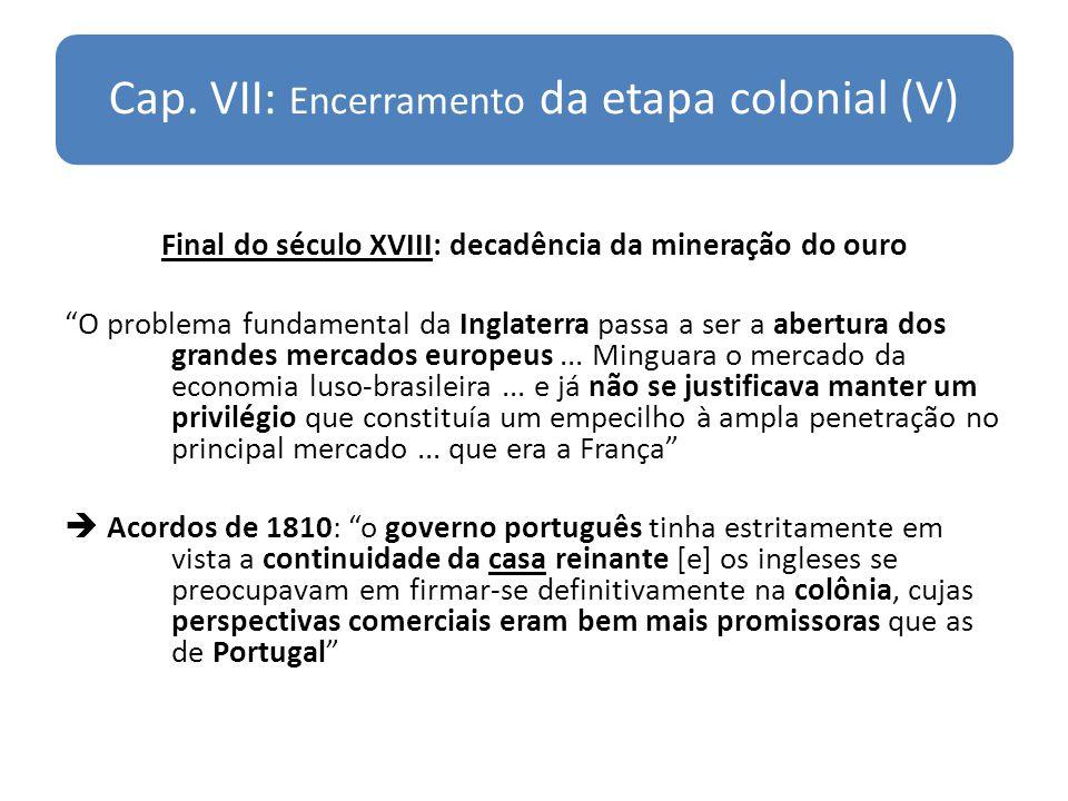 Cap. VII: Encerramento da etapa colonial (V)