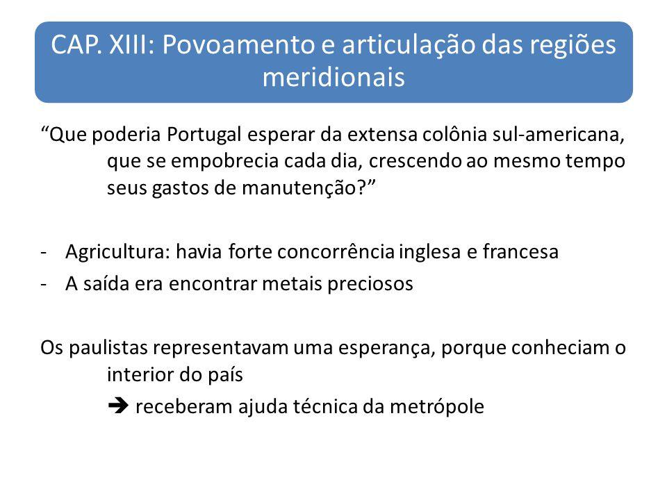 CAP. XIII: Povoamento e articulação das regiões meridionais
