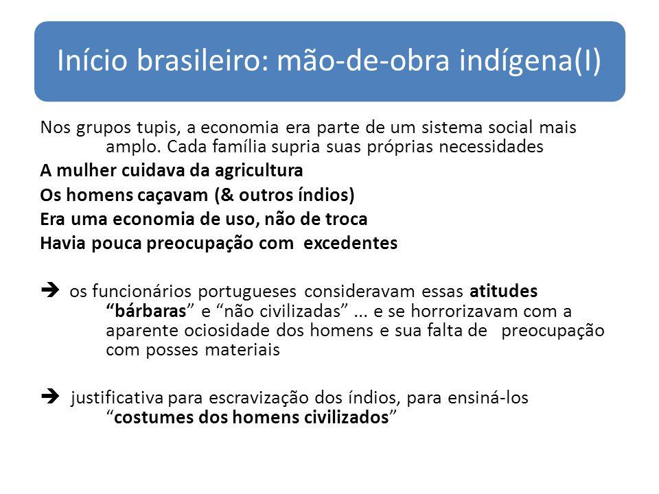 Início brasileiro: mão-de-obra indígena(I)