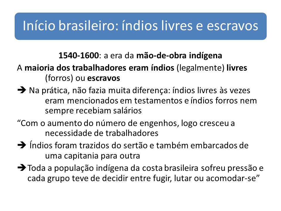 Início brasileiro: índios livres e escravos