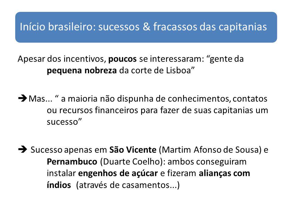 Início brasileiro: sucessos & fracassos das capitanias