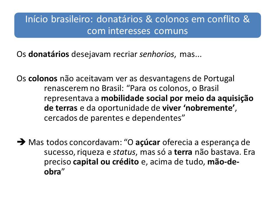 Início brasileiro: donatários & colonos em conflito & com interesses comuns