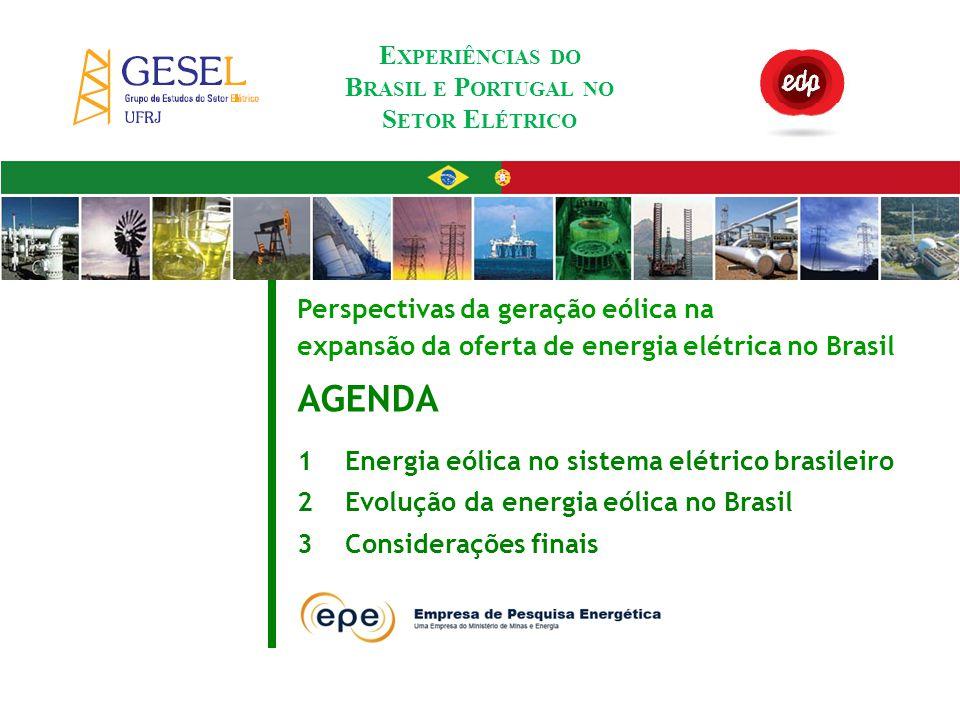 Experiências do Brasil e Portugal no Setor Elétrico