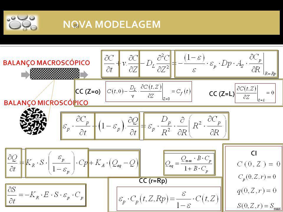 NOVA MODELAGEM BALANÇO MACROSCÓPICO CC (Z=0) CC (Z=L)