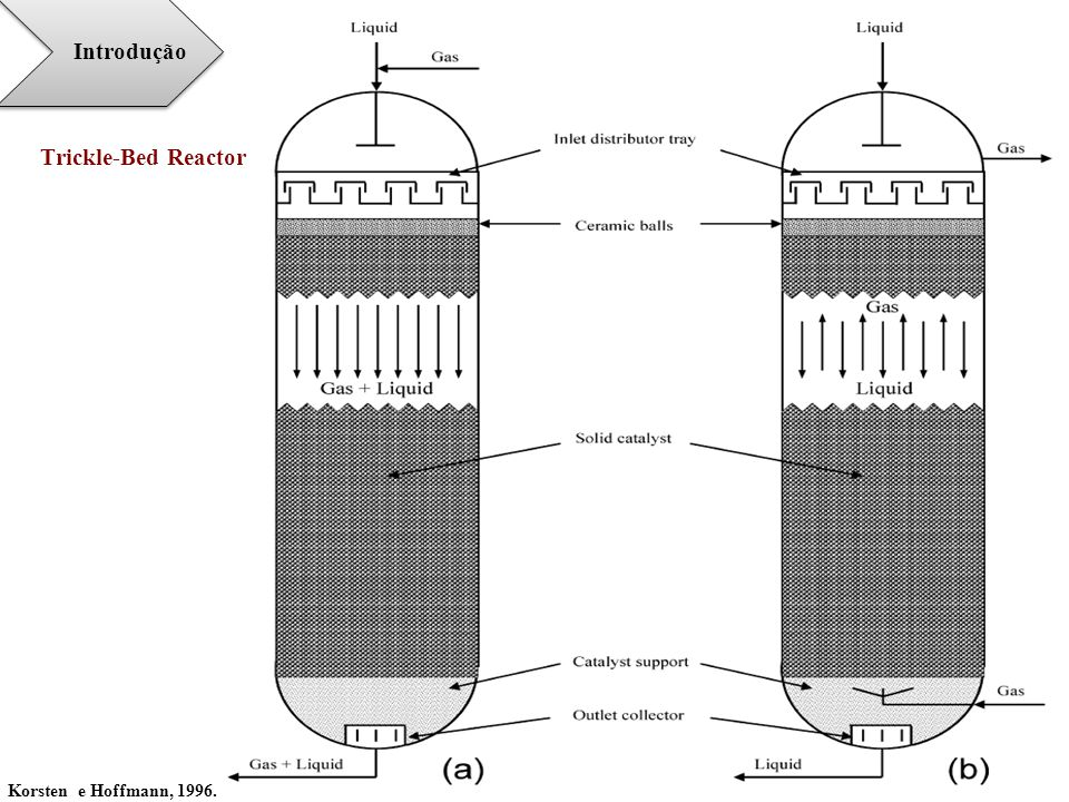 Introdução Trickle-Bed Reactor Korsten e Hoffmann, 1996.