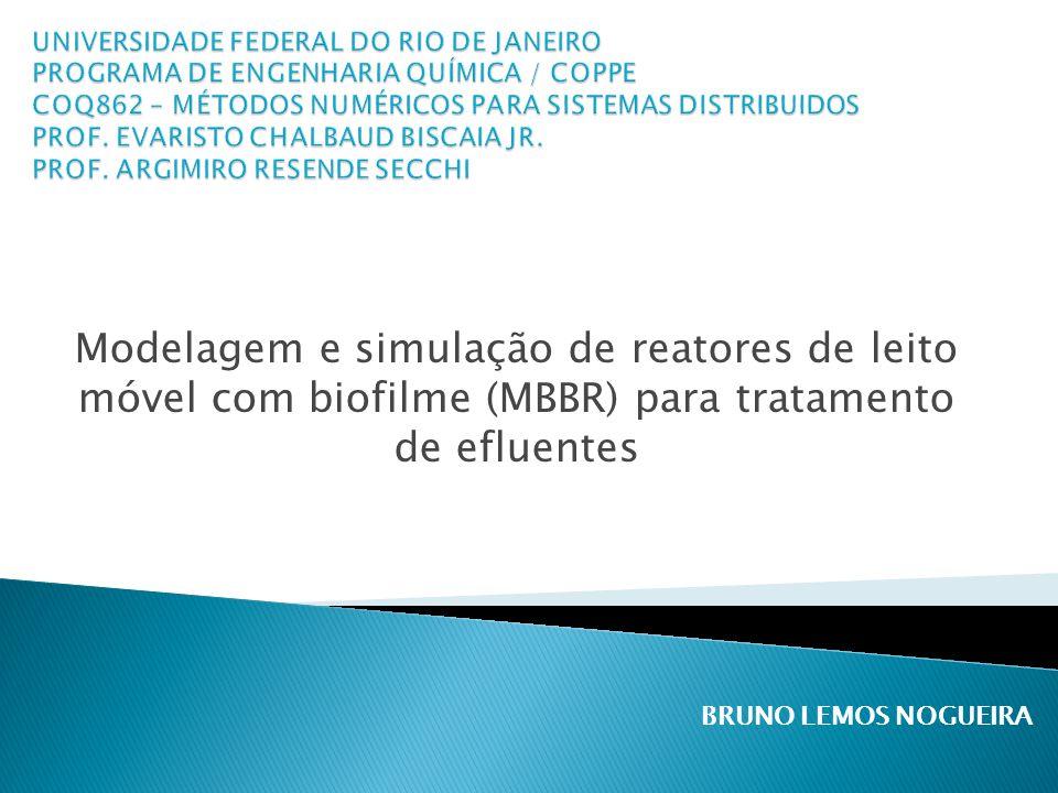 UNIVERSIDADE FEDERAL DO RIO DE JANEIRO PROGRAMA DE ENGENHARIA QUÍMICA / COPPE COQ862 – MÉTODOS NUMÉRICOS PARA SISTEMAS DISTRIBUIDOS PROF. EVARISTO CHALBAUD BISCAIA JR. PROF. ARGIMIRO RESENDE SECCHI