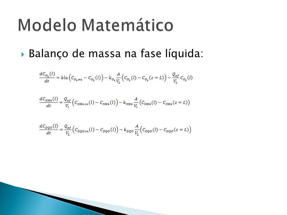 Modelo Matemático Balanço de massa na fase líquida: