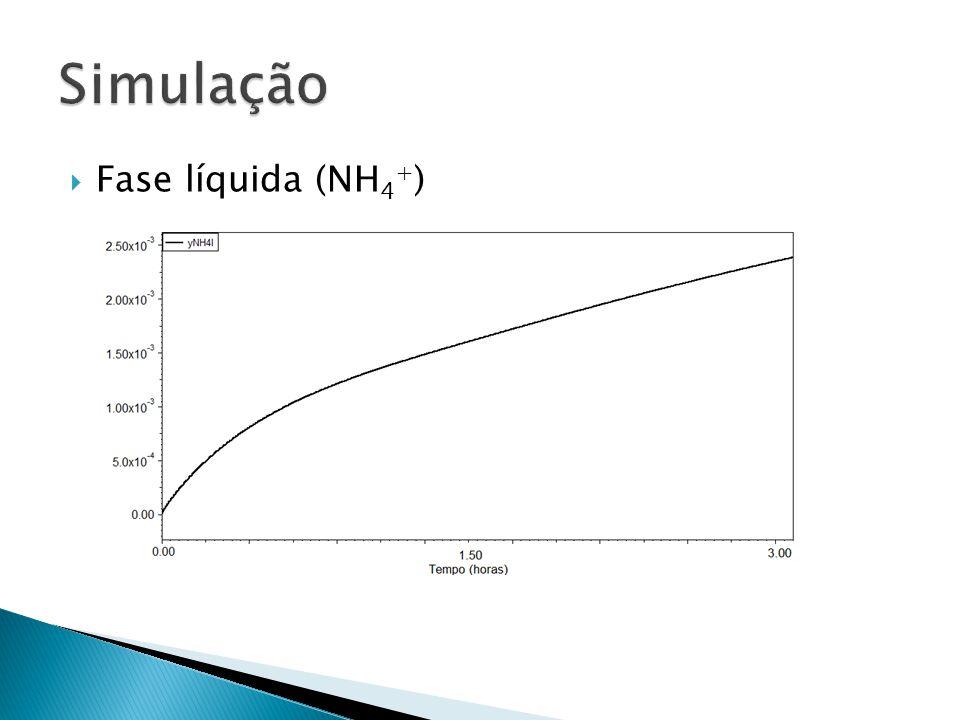 Simulação Fase líquida (NH4+)
