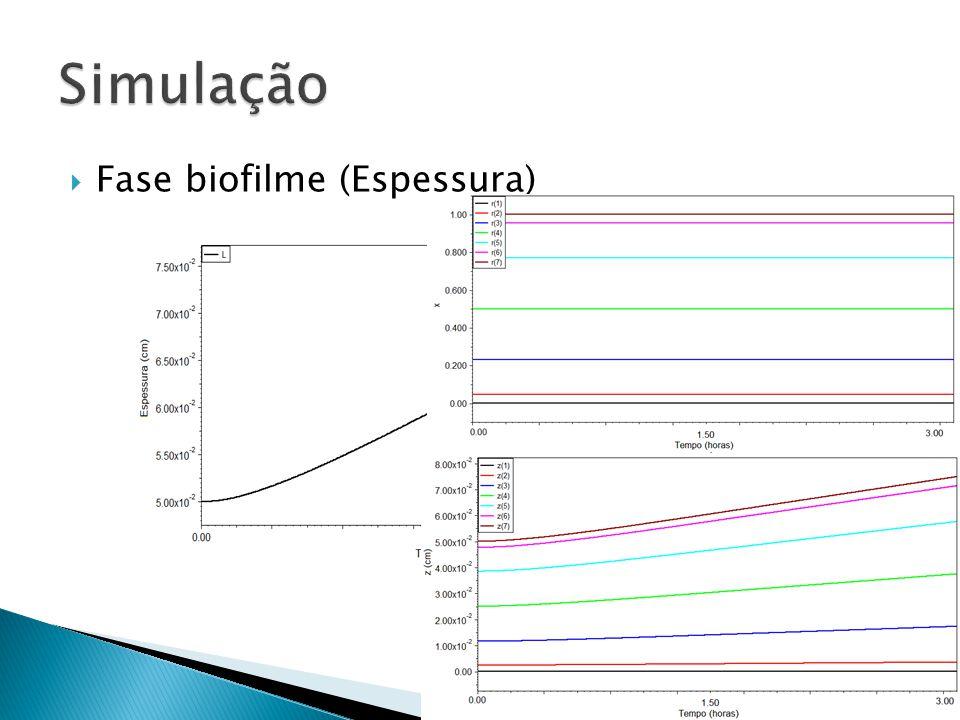 Simulação Fase biofilme (Espessura)