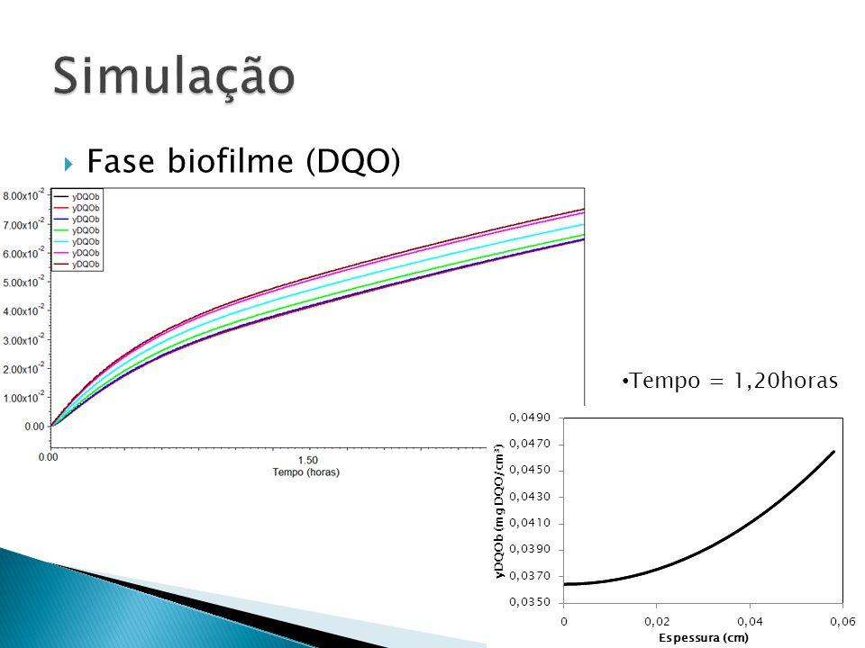Simulação Fase biofilme (DQO) Tempo = 1,20horas