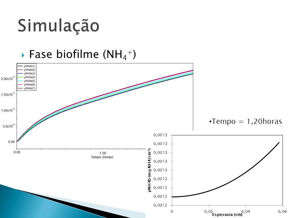 Simulação Fase biofilme (NH4+) Tempo = 1,20horas