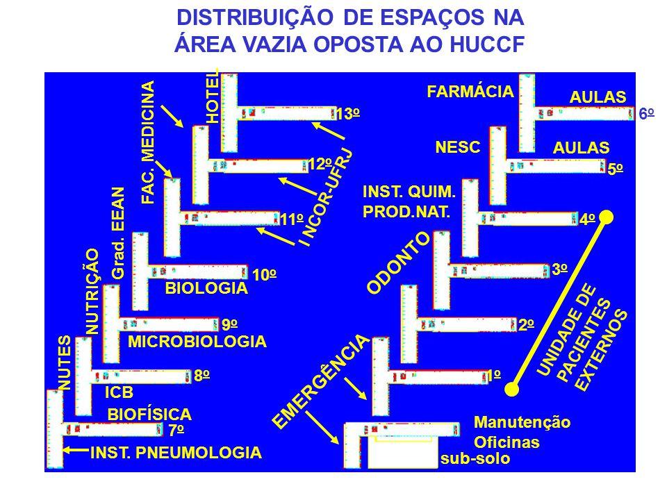 DISTRIBUIÇÃO DE ESPAÇOS NA ÁREA VAZIA OPOSTA AO HUCCF