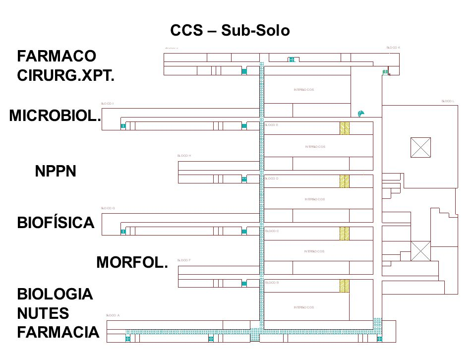 CCS – Sub-Solo FARMACO CIRURG.XPT. MICROBIOL. NPPN BIOFÍSICA MORFOL. BIOLOGIA NUTES FARMACIA