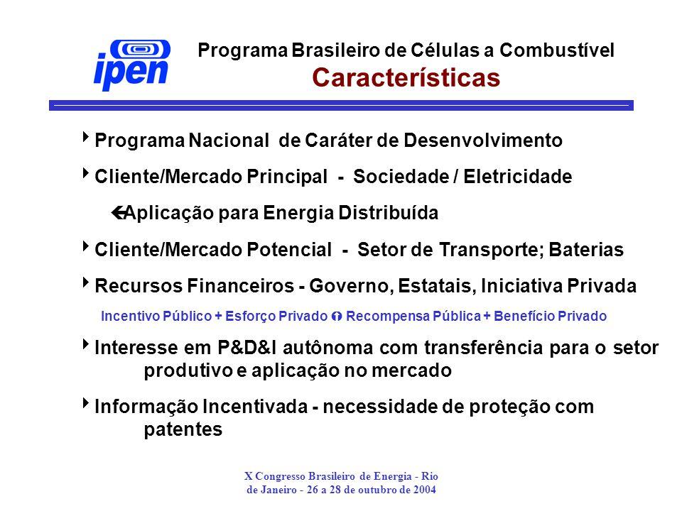 Programa Brasileiro de Células a Combustível Características