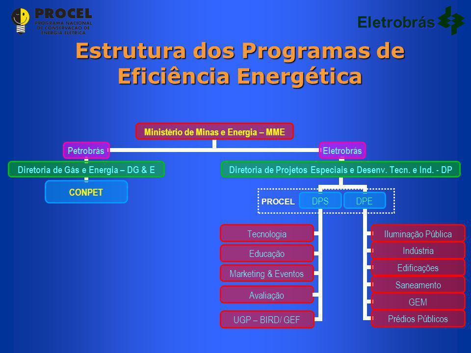 Estrutura dos Programas de Eficiência Energética