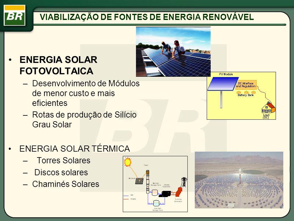VIABILIZAÇÃO DE FONTES DE ENERGIA RENOVÁVEL
