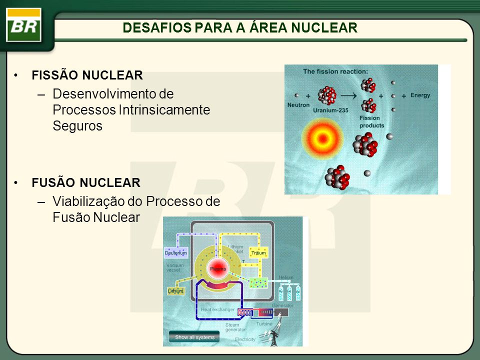 DESAFIOS PARA A ÁREA NUCLEAR