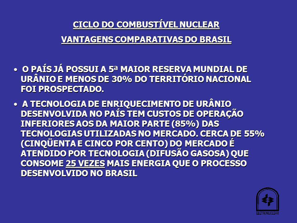 CICLO DO COMBUSTÍVEL NUCLEAR VANTAGENS COMPARATIVAS DO BRASIL