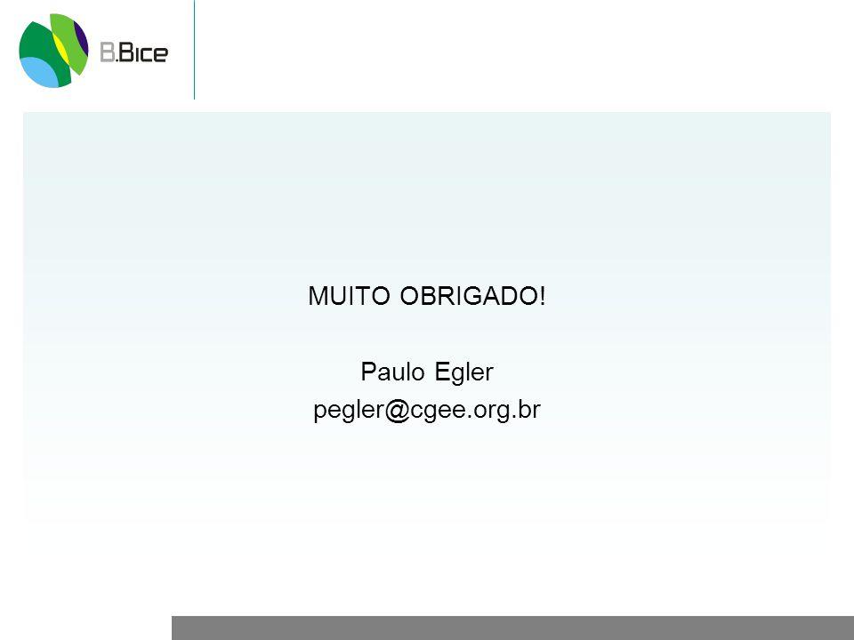 MUITO OBRIGADO! Paulo Egler pegler@cgee.org.br