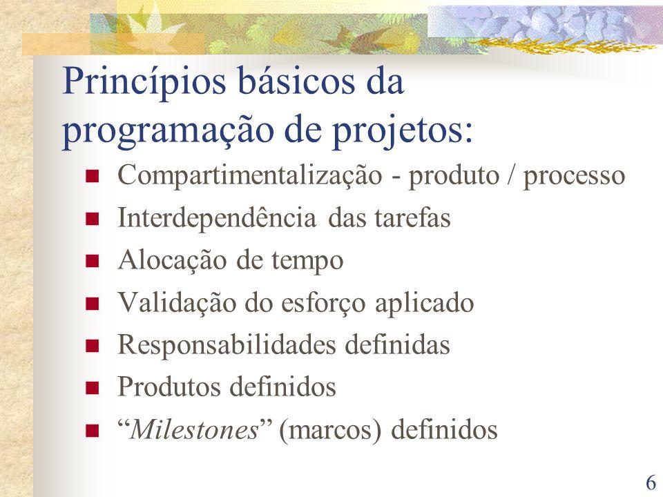 Princípios básicos da programação de projetos: