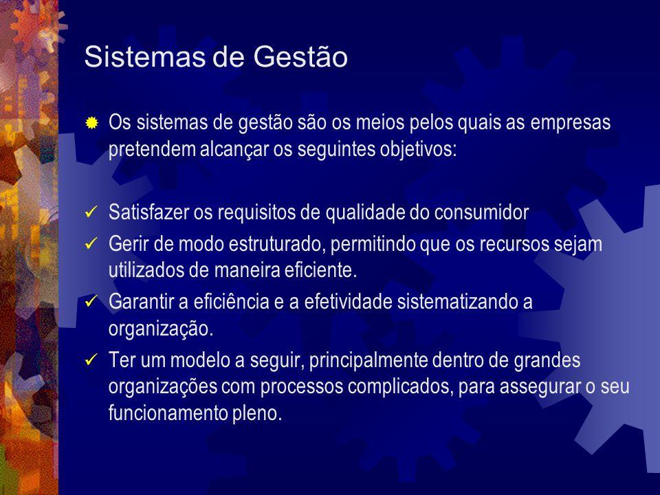 Sistemas de Gestão Os sistemas de gestão são os meios pelos quais as empresas pretendem alcançar os seguintes objetivos: