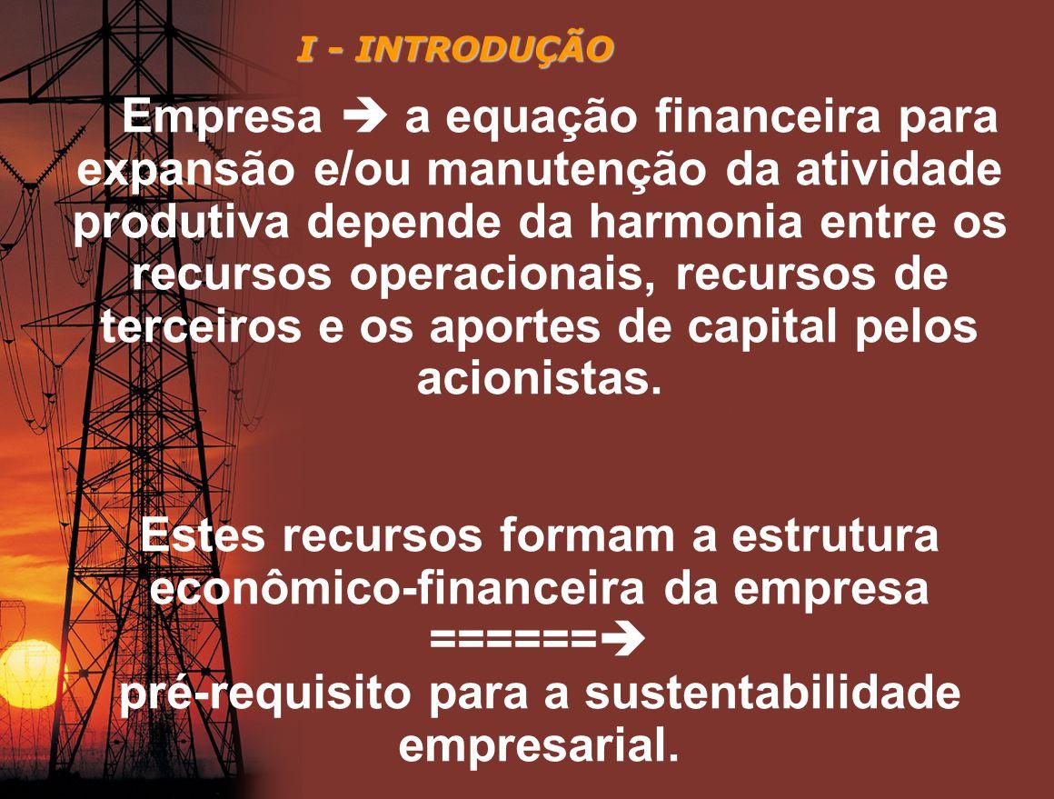Estes recursos formam a estrutura econômico-financeira da empresa