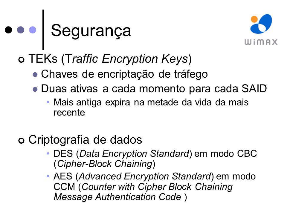 Segurança TEKs (Traffic Encryption Keys) Criptografia de dados