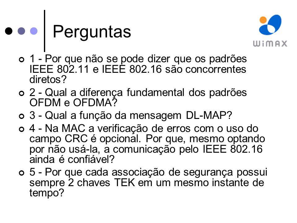 Perguntas 1 - Por que não se pode dizer que os padrões IEEE 802.11 e IEEE 802.16 são concorrentes diretos