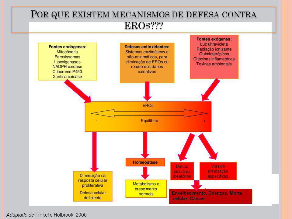 Por que existem mecanismos de defesa contra EROs