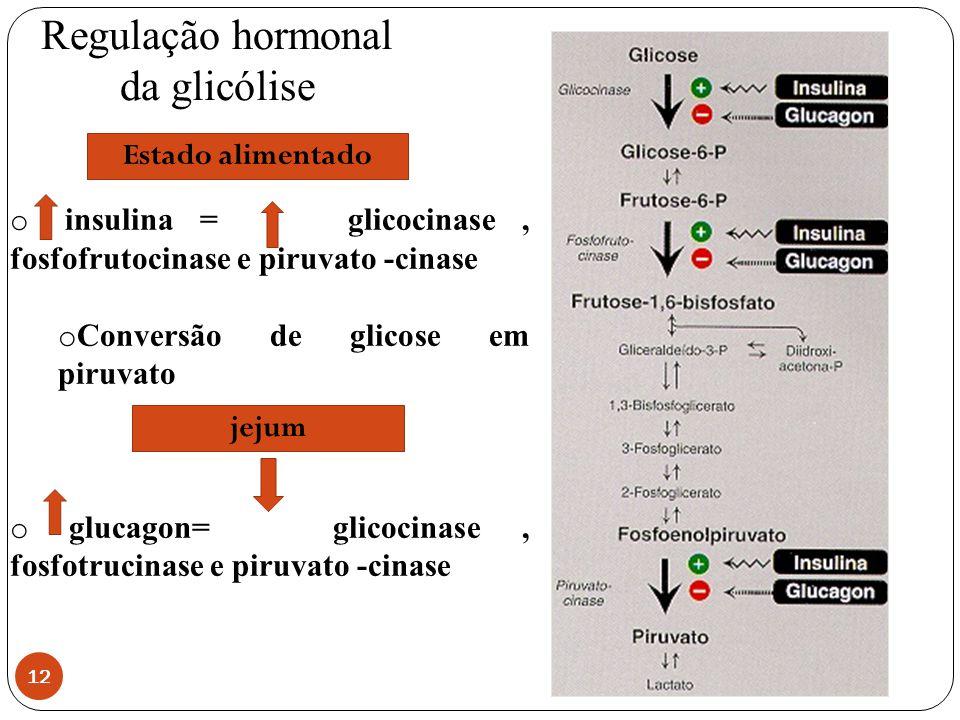 Regulação hormonal da glicólise