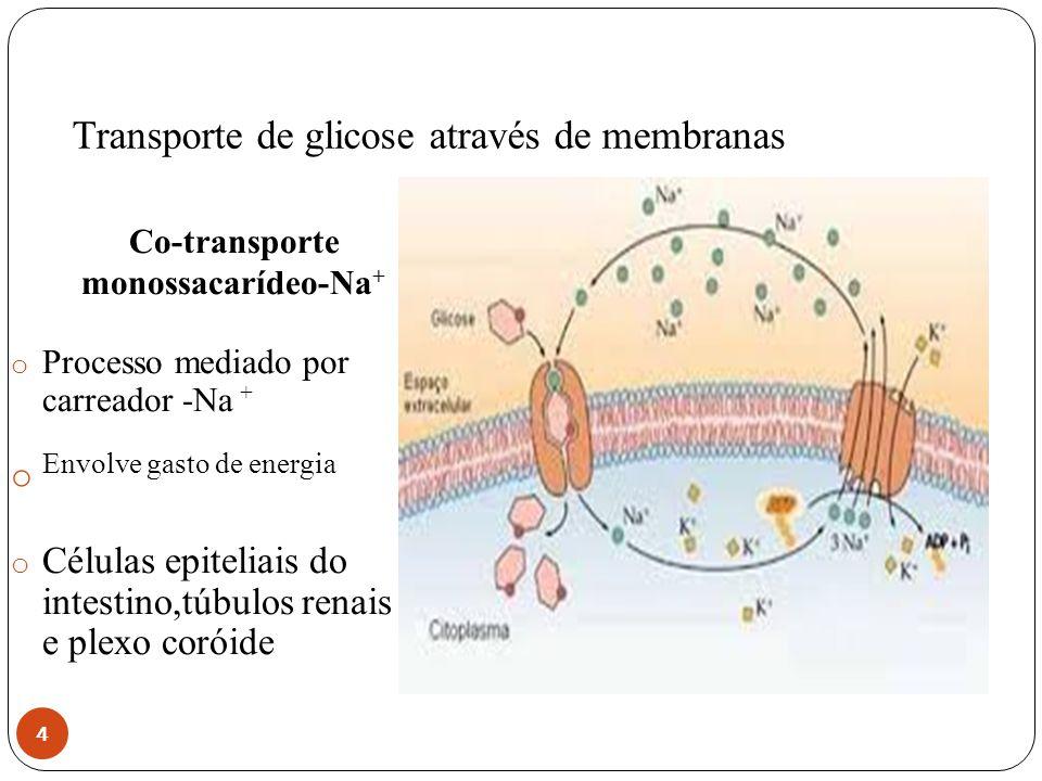 Transporte de glicose através de membranas