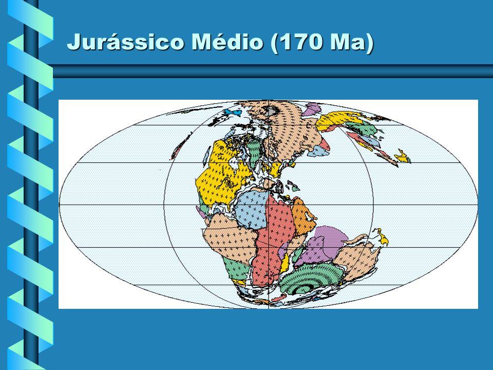 Jurássico Médio (170 Ma)