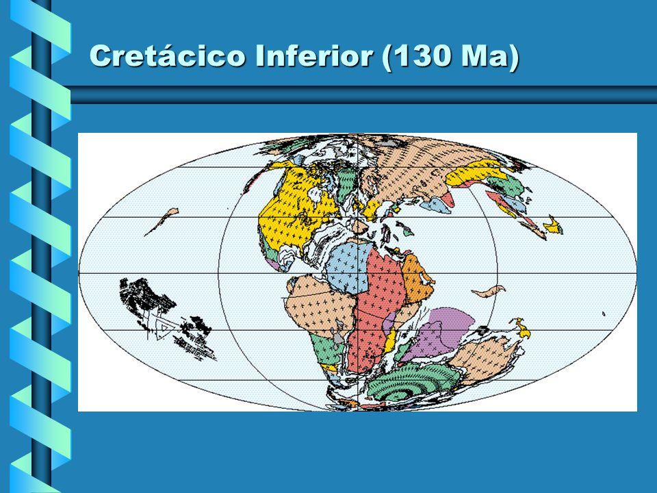 Cretácico Inferior (130 Ma)
