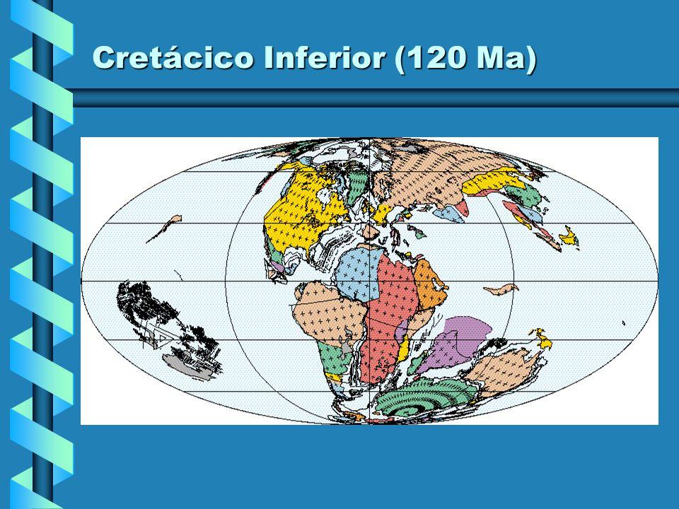 Cretácico Inferior (120 Ma)