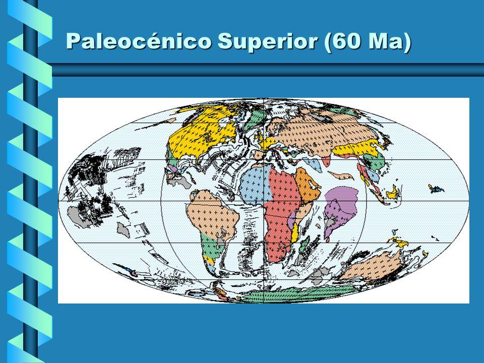Paleocénico Superior (60 Ma)