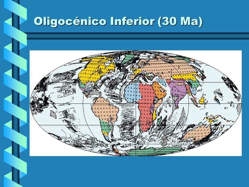 Oligocénico Inferior (30 Ma)