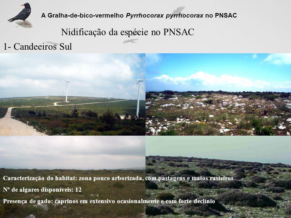 Nidificação da espécie no PNSAC
