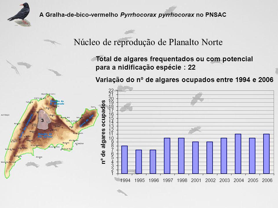 Núcleo de reprodução de Planalto Norte
