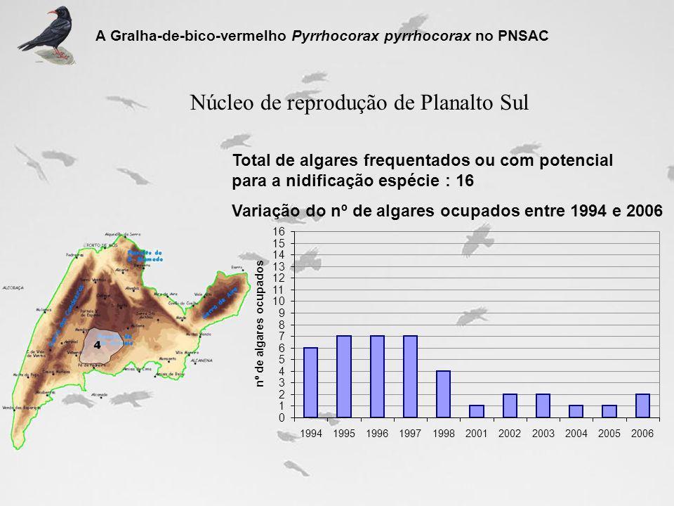 Núcleo de reprodução de Planalto Sul