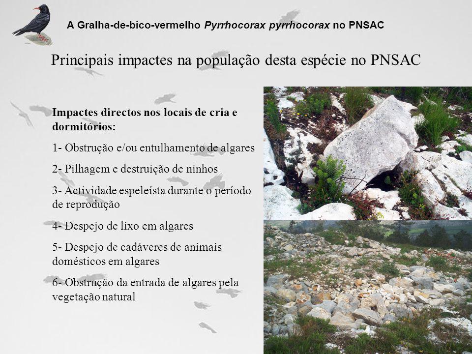 Principais impactes na população desta espécie no PNSAC