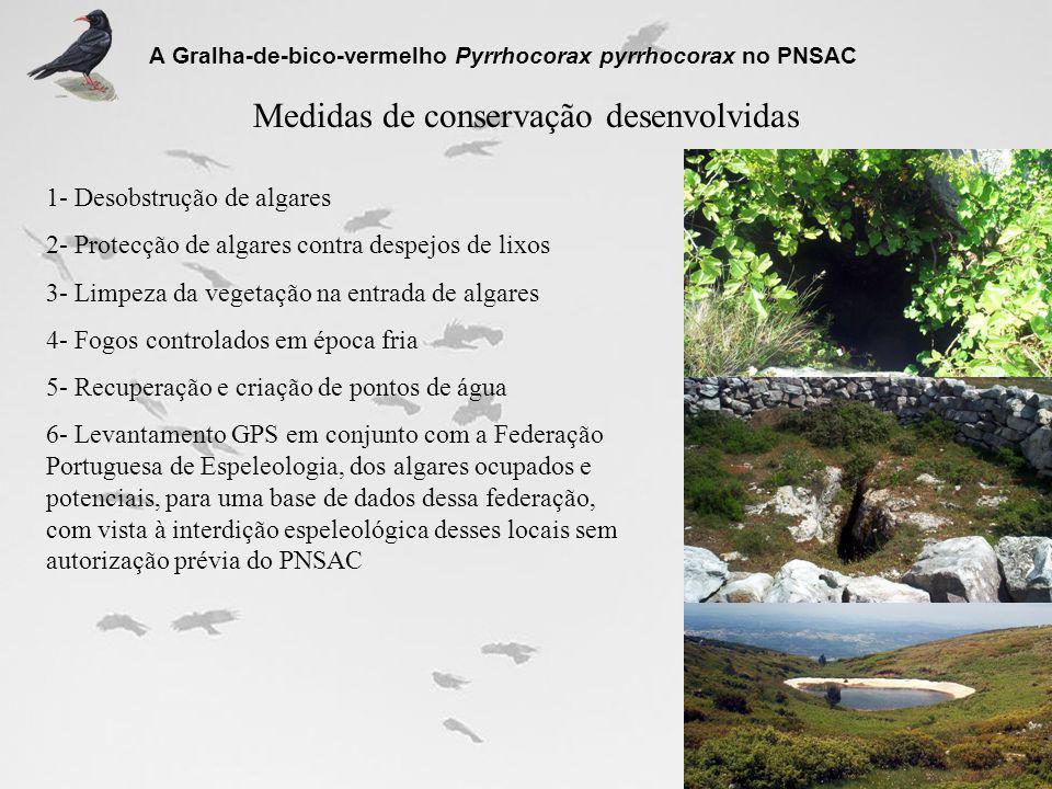 Medidas de conservação desenvolvidas
