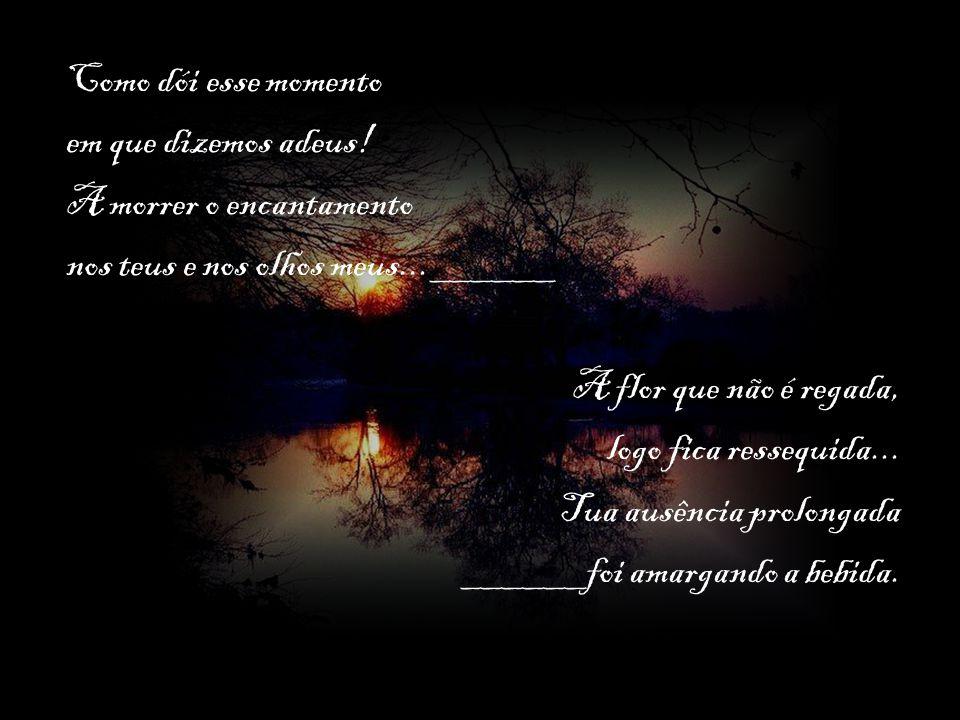Como dói esse momento em que dizemos adeus! A morrer o encantamento. nos teus e nos olhos meus...______.
