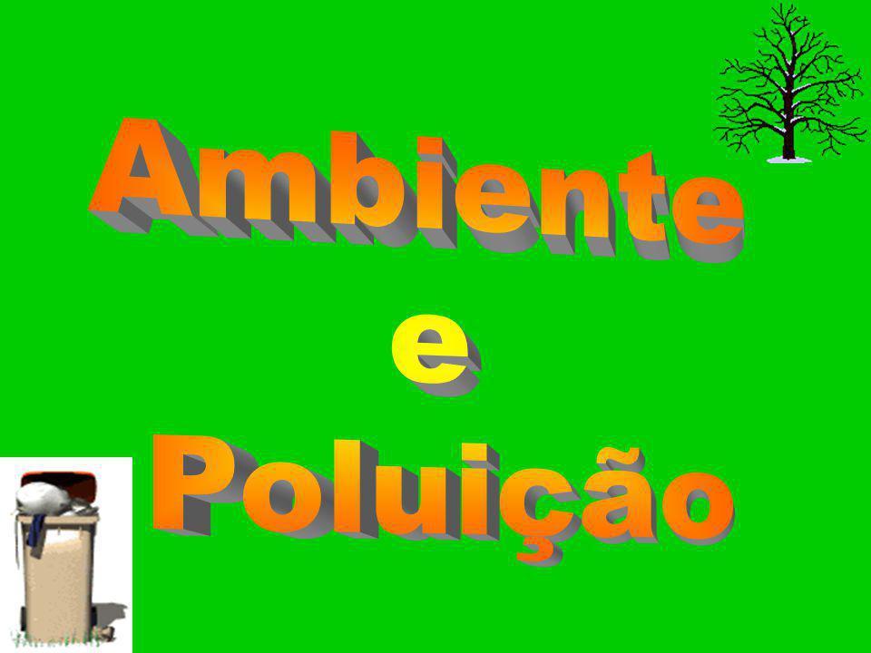 Ambiente e Poluição