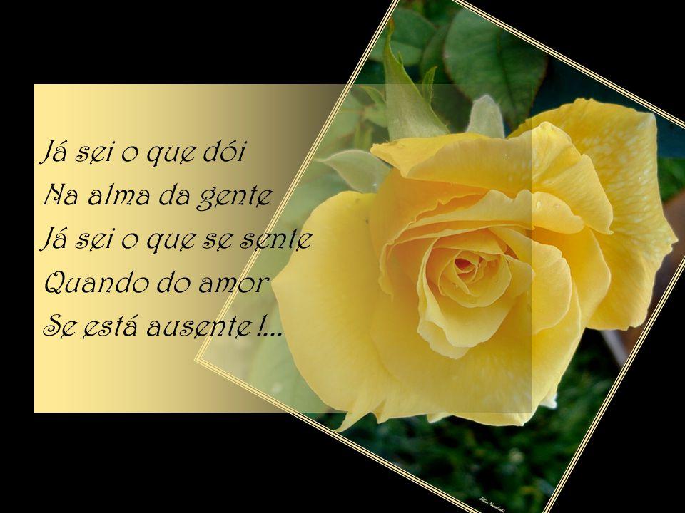 Já sei o que dói Na alma da gente Já sei o que se sente Quando do amor Se está ausente !...