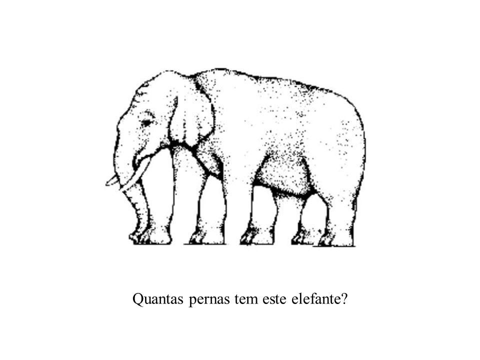 Quantas pernas tem este elefante