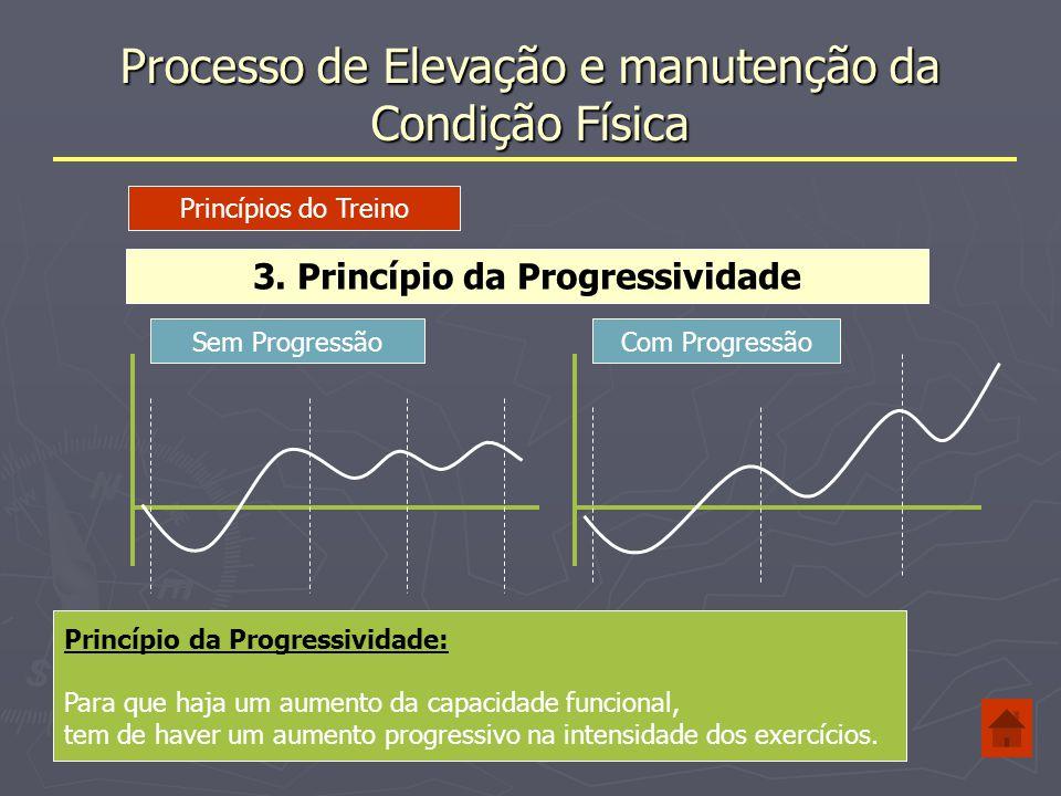 3. Princípio da Progressividade