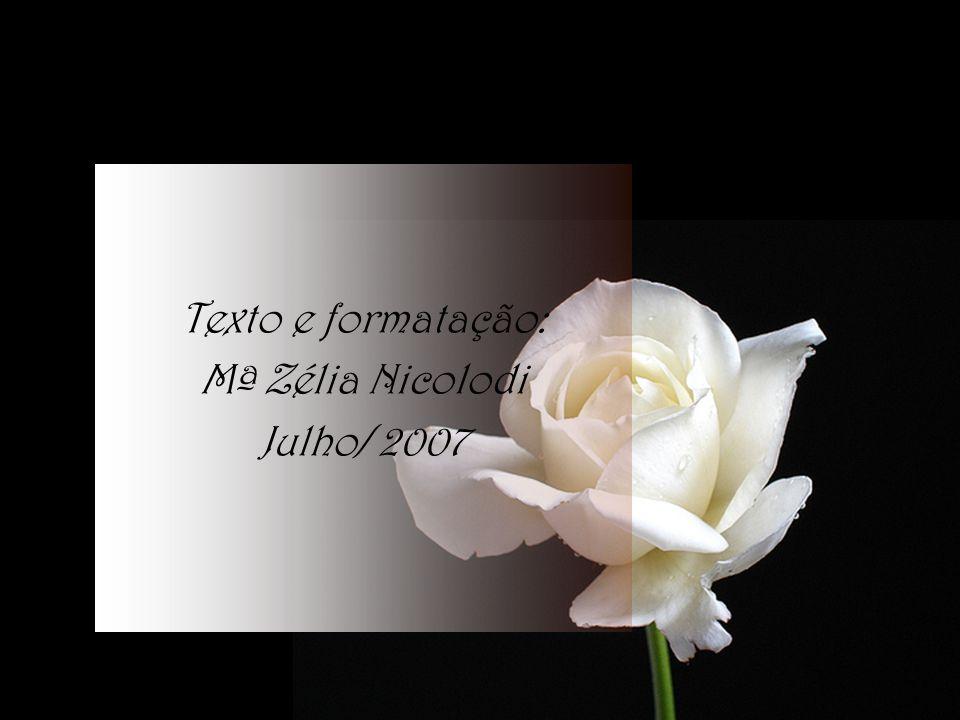 Texto e formatação: Mª Zélia Nicolodi Julho/ 2007